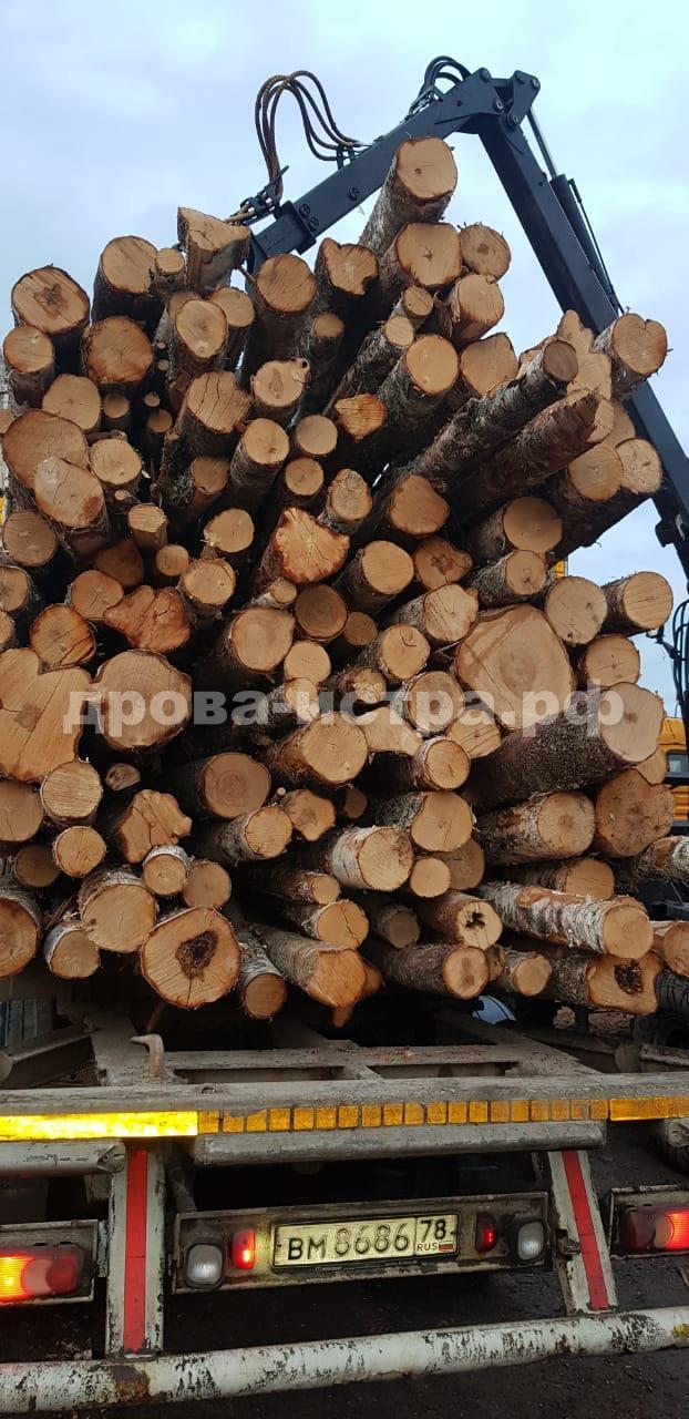 Поставка берёзовых дров на базу