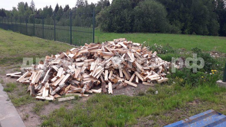 5 м³ берёзовых дров в с. Новопетровское,  Истринский р-н