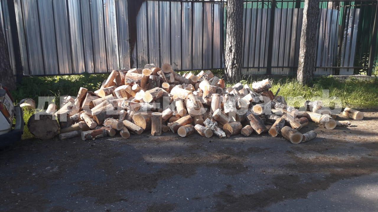 5 м³ берёзовых дров в д. Селиваниха, г.о. Истра