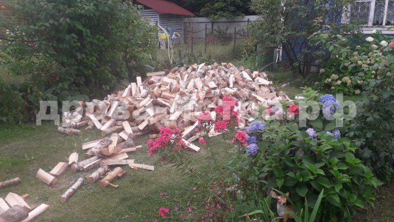 4 м³ берёзовых дров в СНТ Румянцево, г.о. Истра