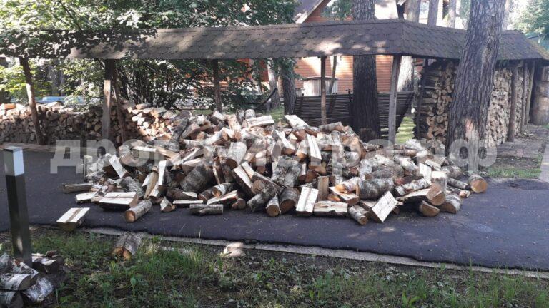 5 м³ берёзовых дров в Бани, г.о. Одинцово