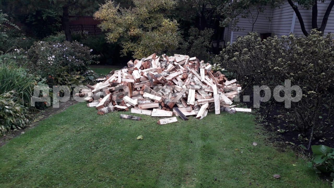 5 м³ берёзовых дров в СНТ Шахтёр, г.о. Истра