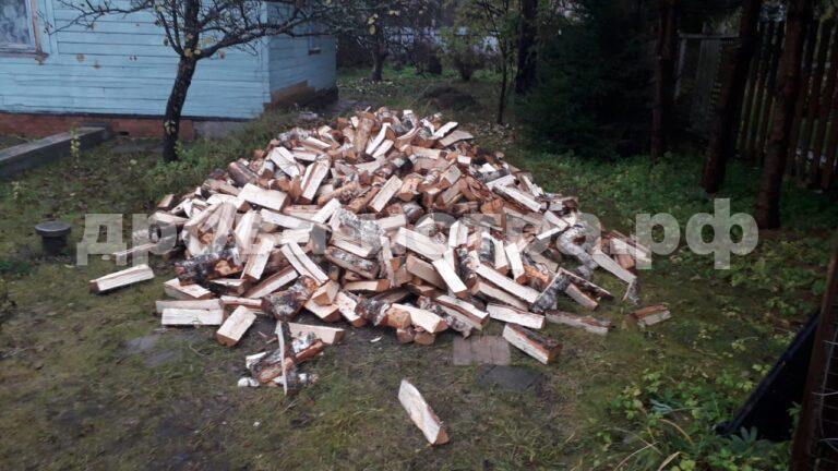 3 м³ берёзовых дров в кп. Светлогорье, г.о. Истра